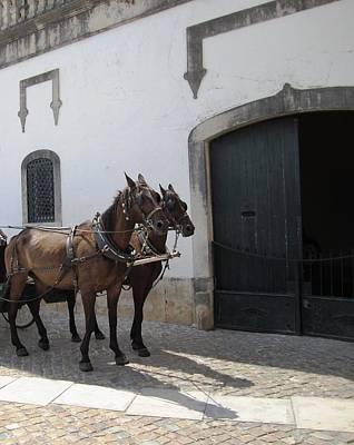 Photograph - Obidos Horses II Portugal by John Shiron