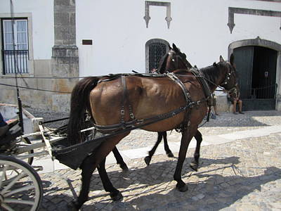 Photograph - Obidos Horses Portugal by John Shiron