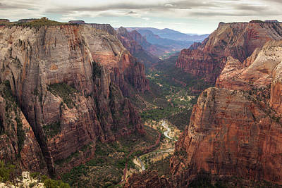 Photograph - Observation Point - Zion by Jay Moore