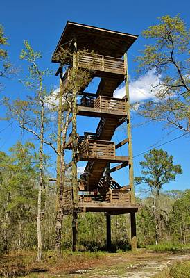 Photograph - Observation Tower by Cynthia Guinn