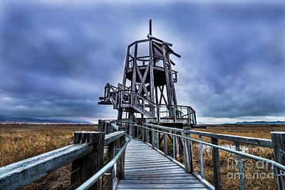 Observation Tower - Great Salt Lake Shorelands Preserve Art Print by Gary Whitton
