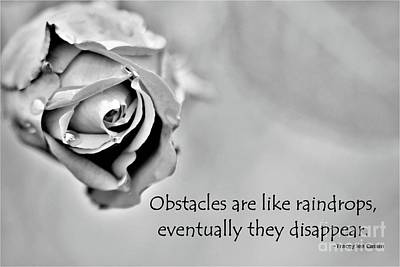 Photograph - Obstacles Are Like Raindrops by Tracey Lee Cassin