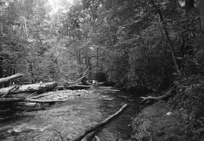 Photograph - Ocanaluftee River - Great Smokey Mountains by William Wetmore