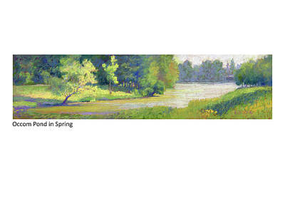 Pastel - Occom Pond In Spring by Betsy Derrick
