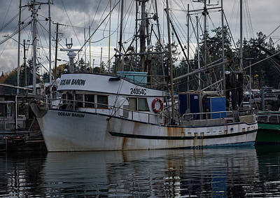 Photograph - Ocean Baron by Randy Hall