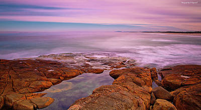 Photograph - Ocean Beauty 701 by Kevin Chippindall