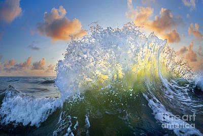 Sea Swell Photograph - Ocean Bouquet  -  Part 3 Of 3 by Sean Davey