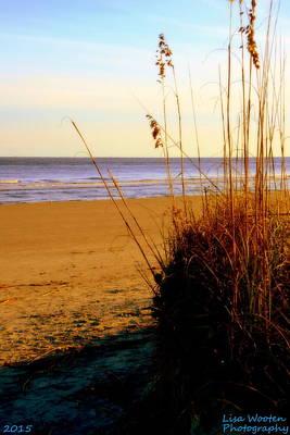 Photograph - Ocean Breeze by Lisa Wooten
