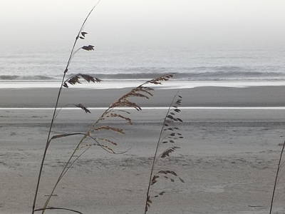 Photograph - Ocean by Cindy Fleener