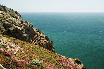 Photograph - Ocean Cliffside Wildflowers #2 by Renee Hong