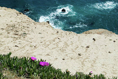 Photograph - Ocean Cliffside Wildflowers by Renee Hong