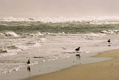 Photograph - Ocean Edge by Steve Karol
