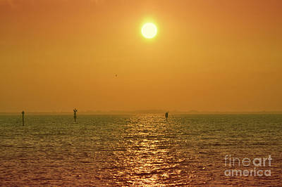Photograph - Ocean Golden Sunset Landscape by Andrea Hazel Ihlefeld