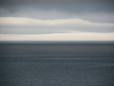 Photograph - Ocean Horizon by Trance Blackman