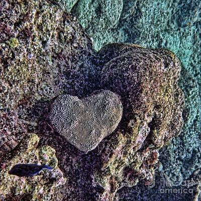 Digital Art - Ocean Love by Peggy Hughes