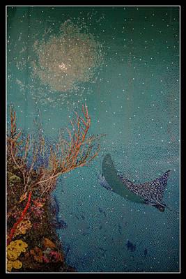 Photograph - Ocean Mosaic by Teresa Wilson