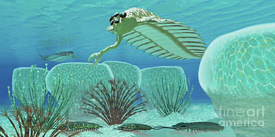 Animal Themes Painting - Ocean Opabinia by Corey Ford
