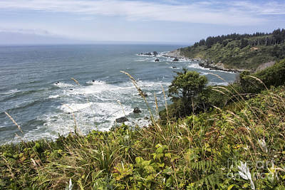 Photograph - Ocean Overlook by Melany Sarafis