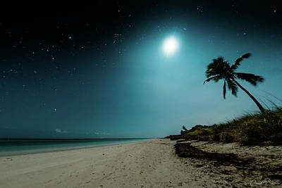 Bahia Honda Photograph - Ocean Palm by Chris M Sheridan