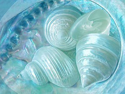 Abalone Photograph - Ocean Pearl Treasure by Gill Billington