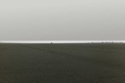 Ocean Shores Art Print by Marcello Cicchini