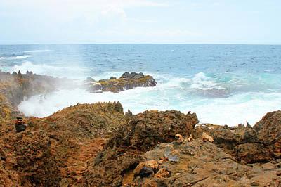 Ocean Spray Off The Rugged Coast Of Aruba Art Print by Design Turnpike