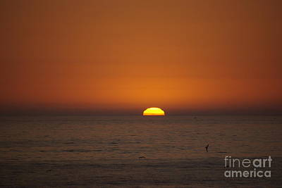 Photograph - Ocean Sunset by Jim And Emily Bush