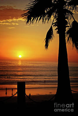 Photograph - Ocean Sunset With Palm Tree by Jim And Emily Bush