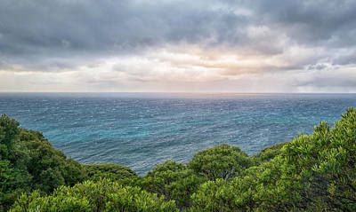 Photograph - Ocean View by Martin Capek