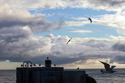 Photograph - Ocean View by Scott Meyer