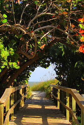 Photograph - Ocean Walkway by RobLew Photography