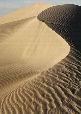 Photograph - Oceano Dunes II by Sharon Foster