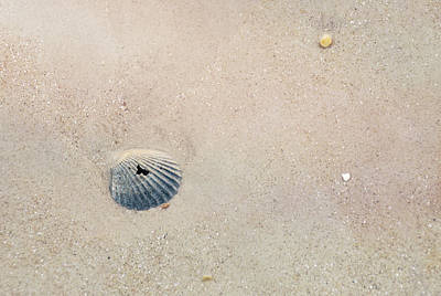 Photograph - Ocean's Bottom by JAMART Photography
