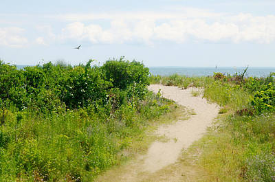Stratford Photograph - Ocean's Path by Diana Angstadt