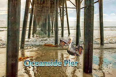 Digital Art - Oceanside - Pelican Under The Pier by Gabriele Pomykaj