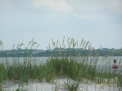 Oceanview Through Seaoats Art Print by Barb Montanye Meseroll