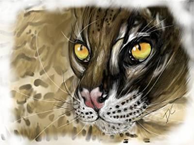 Golden Leopard Digital Art - Ocelot by Darren Cannell