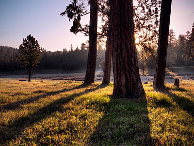 Photograph - Ochoco Meadow by Leland D Howard
