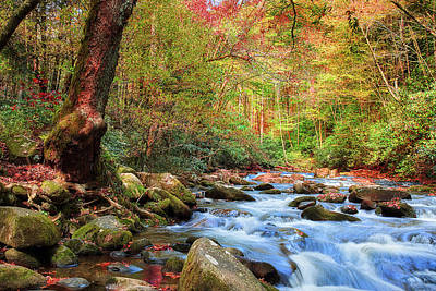 Photograph - Oconaluftee River by David A Lane