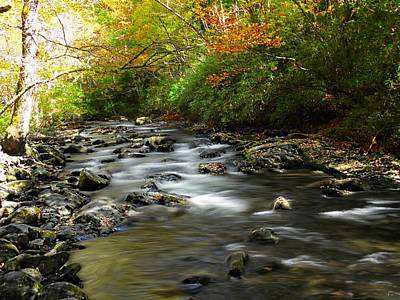 Photograph - Oconaluftee River Solace by Joe Duket