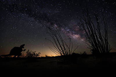 Photograph - Ocotillo And Dino Milky Way by Scott Cunningham