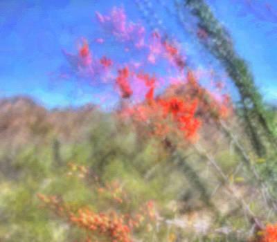 Digital Art - Ocotillo Bloom by Nadine Berg