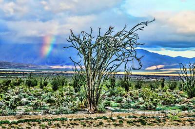 Digital Art - Ocotillo Cactus Rainbow by Daniel Hebard