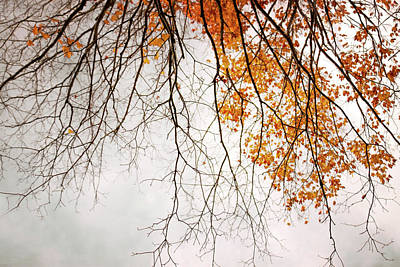 Photograph - October by Angie Rea