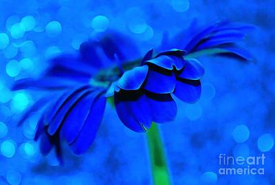 Blue Flowers Photograph - October Blues by Krissy Katsimbras