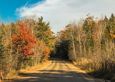 October Byway Art Print by Laurie Breton