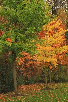 Photograph - October Colors In Ohio by Dan Sproul