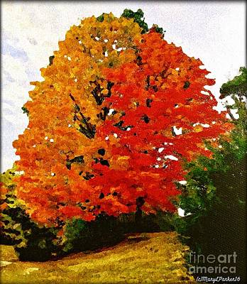 Maple Season Mixed Media - October Colors by MaryLee Parker