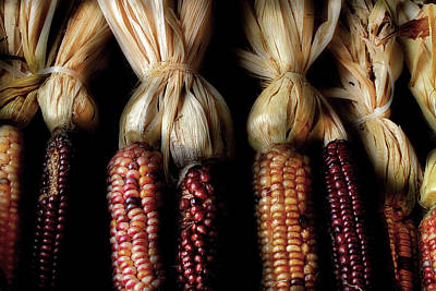 Photograph - October Corn by Michael Eingle