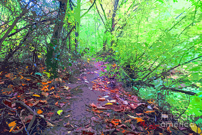 Mixed Media - October Forest Pathway by Michael A Klein